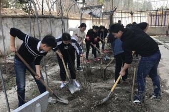 总务处开展义务植树造绿活动